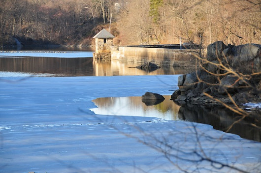 winter ward acres, photo