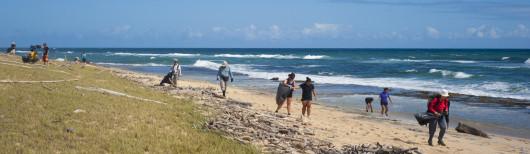clean-beaches-clean-water