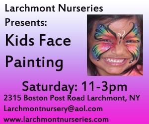 larchmont nursery6a3fe0750b27