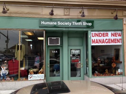 new rochelle human society thrift shop