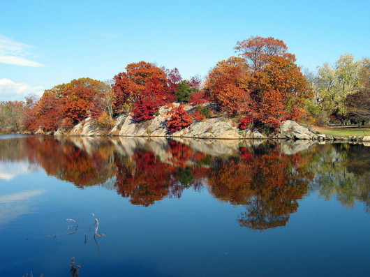 fall, greenwich, bruce park