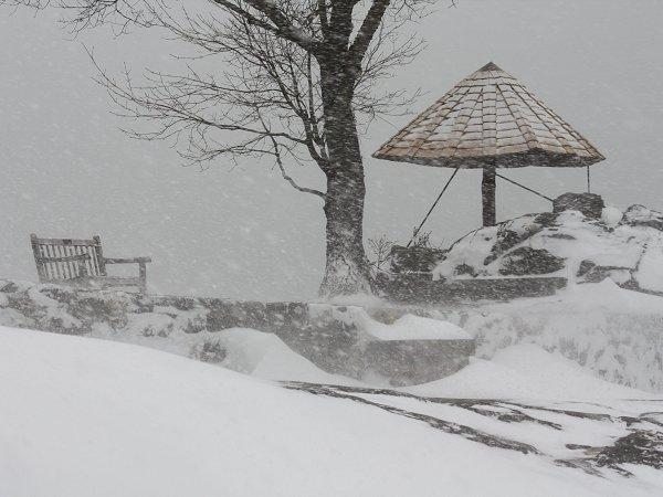 Larchmont snow manor