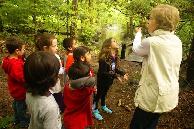 Exploring Nature at Sheldrake Environmental Center