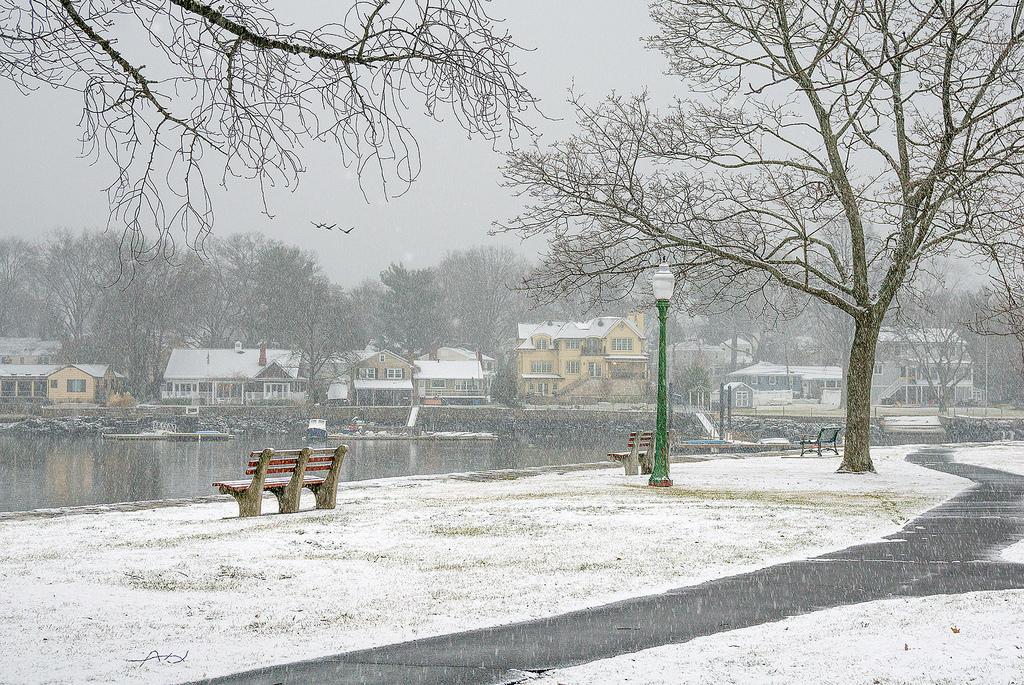 photo, snow,