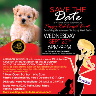 A Savvy Affair's 3rd Annual Puppy Red Carpet at Gigante Restaurant @ Gigante Restaurant |  |  |