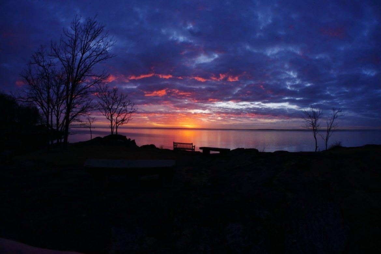sunrise larchmont