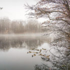 photoofday, fog,sjpg